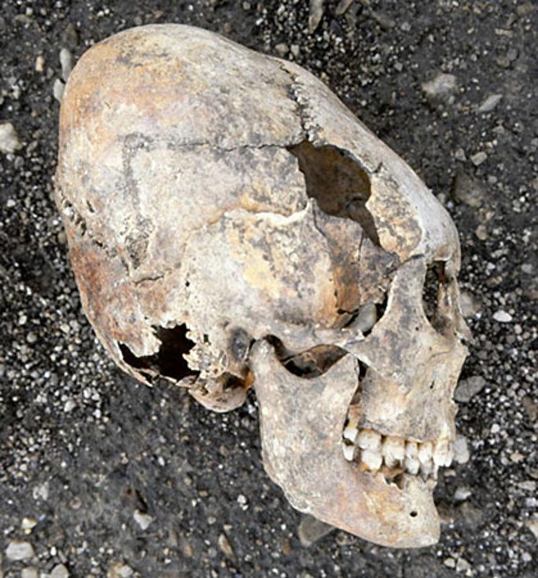 Ostgoten-Schädel aus Kärnten