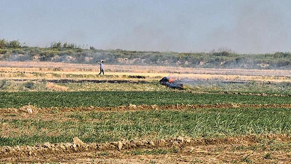 Abbrennen von Stoppeln auf einem Feld in Usbekistan