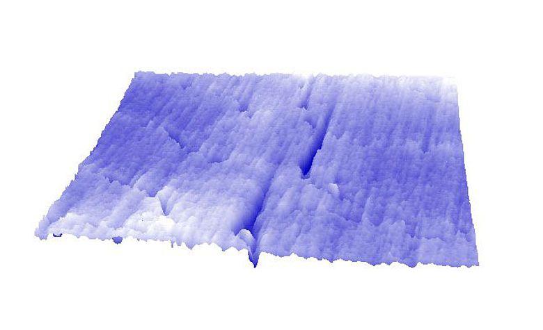 Zahnoberfläche mit zwei großen Abschürfungen (dunkelblaue Linien) durch Quarz-Partikel. (Peter Lucas, Kuwait University)
