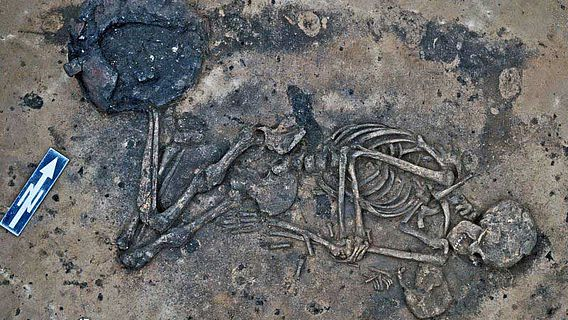 Eine der zahlreichen Bestattungen, die im Laufe der Ausgrabungen freigegelgt wurden (© LDA LSA)