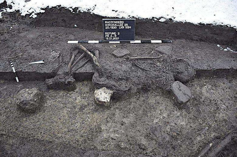 Bestattung der frühen Bronzezeit in sogenannter Hockerstellung