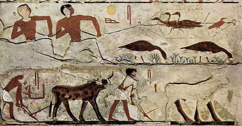 Seit Jahrtausenden prägen Menschen die Landschaften