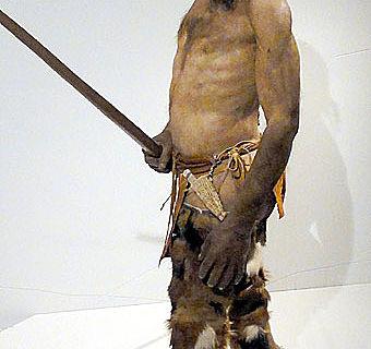 Durch eine biochemische Analyse konnten die meisten Fellteile der Kleidung von Ötzi bestimmt werden.