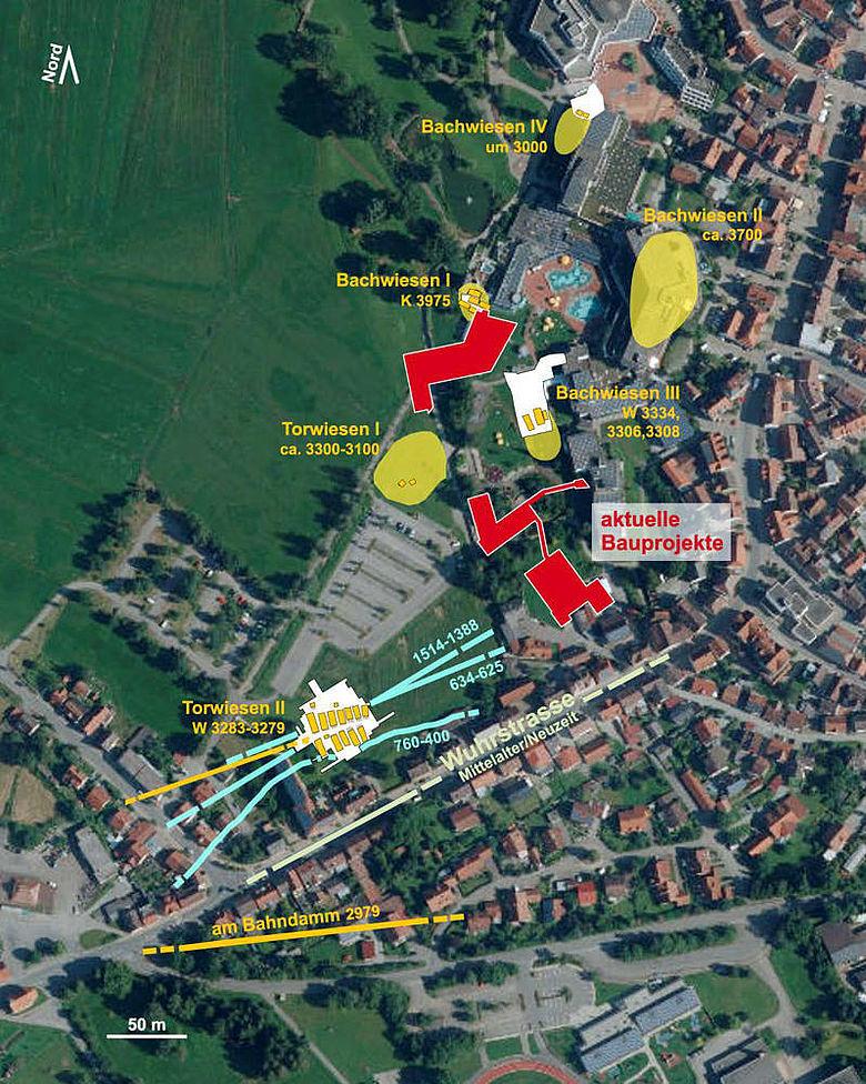 Prähistorische Siedlungen und Bohlenwege in Bad Buchau