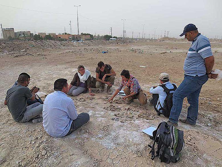 Survey im Süd-Irak