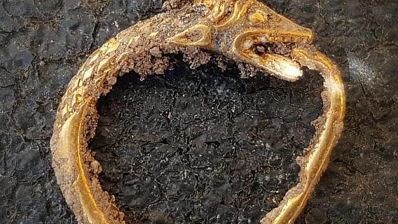 Goldener Ouroboros-Ohrring