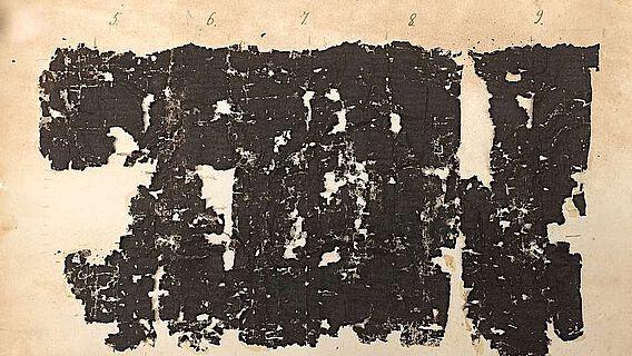 Typisches Beispiel eines Bruchstücks der Papyrusrolle, aufgezogen auf Karton