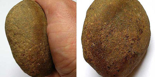 Ein Spurenfossil der besonderen Art