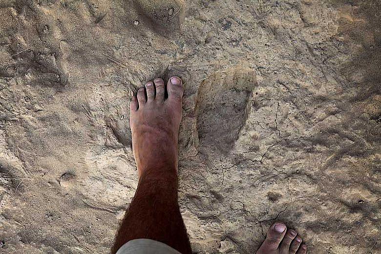 Vergleich mit Fuß eines modernen Menschen