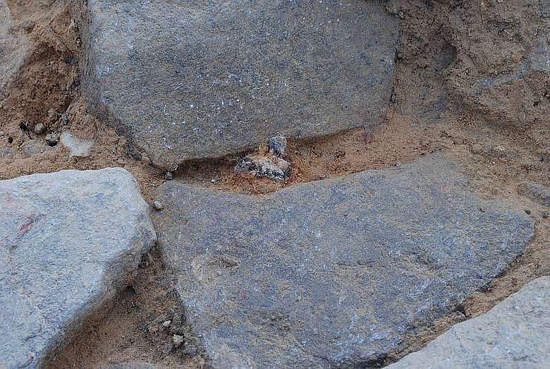Teil der Pflasterung in der Torgasse mit einem Schuhnagel zwischen den Steinen (© Sabine Hornung/Arno Braun, JGU)