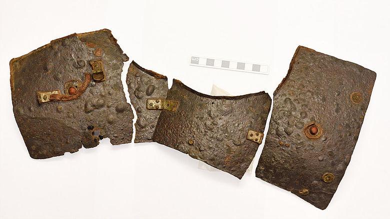 Linker Hals- und Schulterbereich des Kalkrieser Schienenpanzers