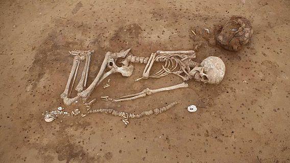 Frauengrab mit Zahn und Muschelschmuck