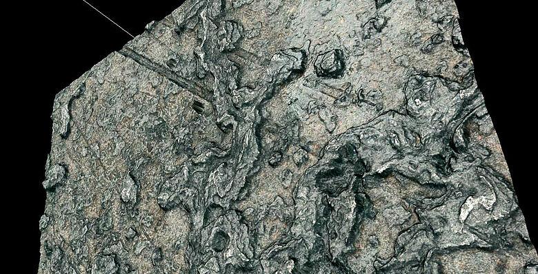 Mikroskopaufnahme Himmelsscheibe