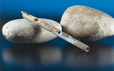 Flöte aus einem Röhrenknochen eines Singschwanes, ca. 36.800 Jahre alt, 12,6 cm. Blaubeuren-Weiler, Geißenklösterle (Alb-Donau-Kreis). (Foto: Urgeschichtliches Institut der Eberhard-Karls-Universität Tübingen, H. Jensen)