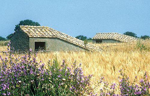 Die ziegelgedeckten Hütten auf den Feldern von Tarquinia sind die einzigen sichtbaren Zeichen für die Schätze, die unter der Erde schlummern