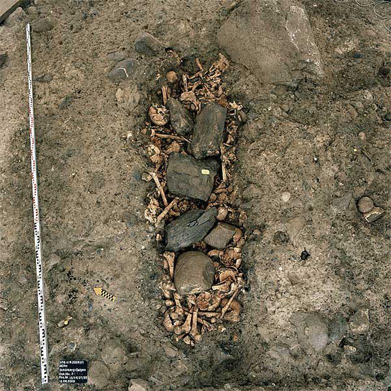 Eine Grube voller Knochen und Leichenteile, mit Steinen beschwert. (Archäologischer Dienst des Kantons Bern)