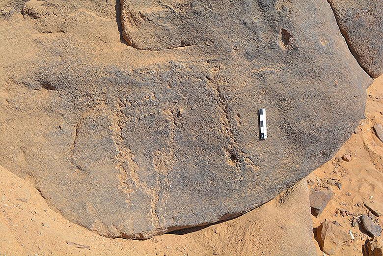 Neolithische Felsgravuren nahe Assuan