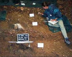 Ausgrabungsarbeiten in den Schichten des Aurignacien. Links unten ist eine Feuerstelle aus dem Aurignacien erkennbar. (Foto: Universität Tübingen)