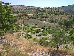 Das Tal bei der Fundstelle Pepouza (Foto: Prof. P. Lampe)