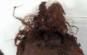 Haare der Moorleiche. (Foto: Niedersächsisches Landesamt für Denkmalpflege)