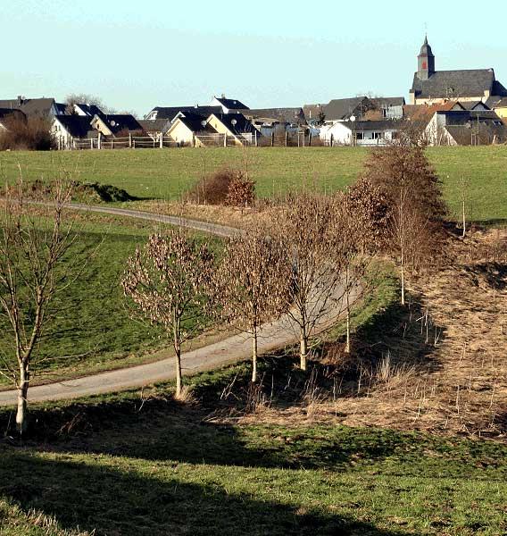 Abb. 6. Straße südlich von Hennef-Happerschoß, bei der die Steigung durch eine Kurve überwunden wird (Foto: Herzog)