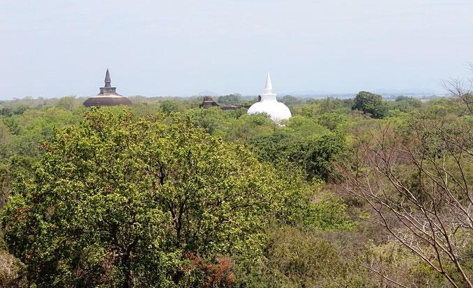 Relikte buddistischer Bauwerke im Tropenwald
