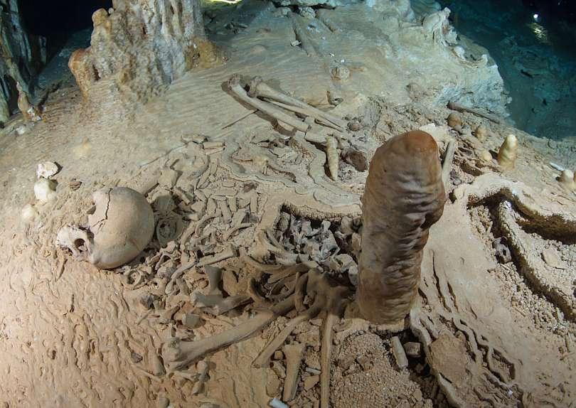 Fund eines prähistorischen menschlichen Skeletts in der Chan-Hol-Höhle bei Tulúm