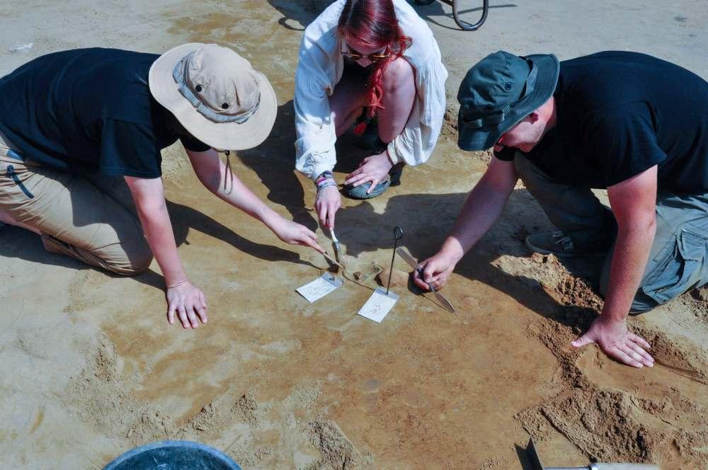 Archäologiestudierende beim vorsichtigen Freilegen von Scherben