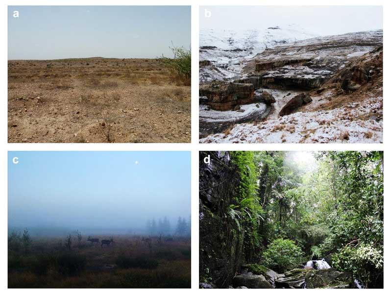 Beispiele ökologischer Herausforderungen
