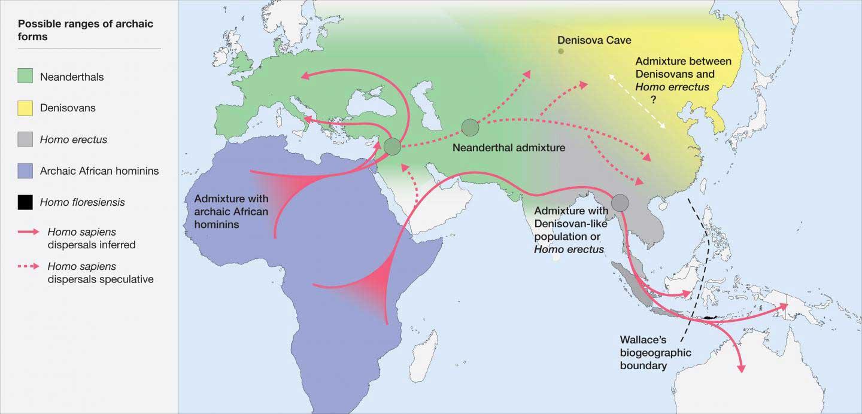 Ausbreitung archaischer Homininen