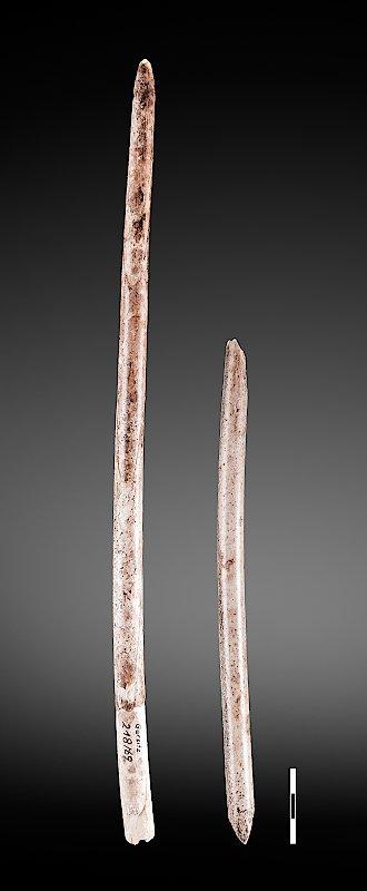 Geschossspitzen aus Mammutelfenbein (lange Spitze) und Rentiergeweih von der jungpaläolithischen Höhlenfundstelle Garsitz-Bärenkeller (Thüringen)