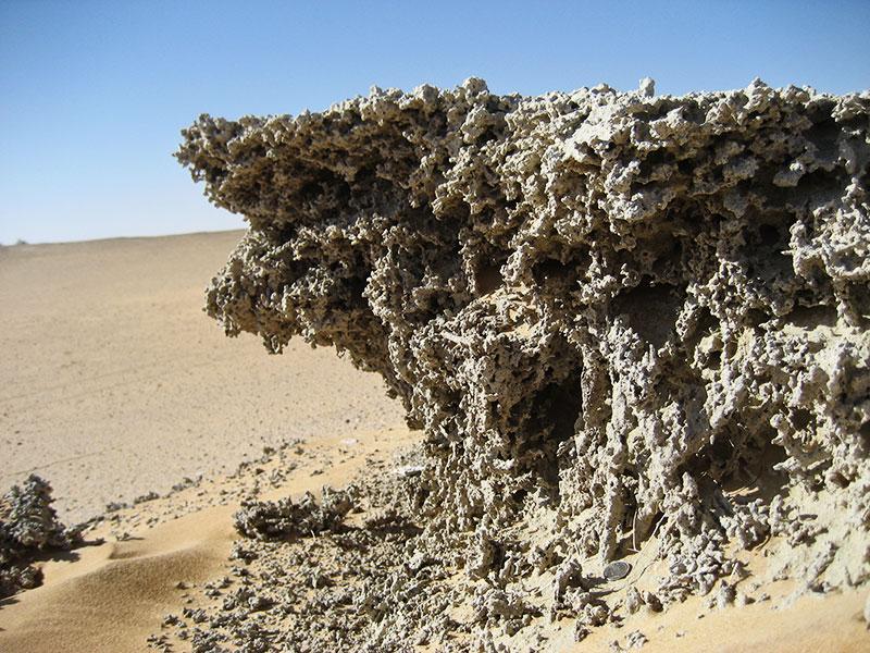 Fossile Seeablagerungen