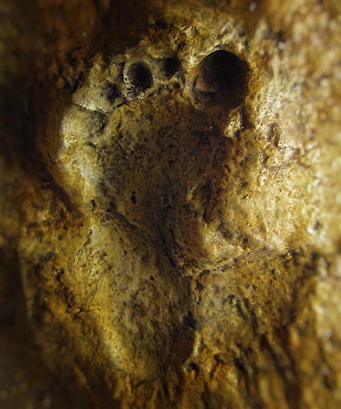 Fußabdruck eines Neandertalers