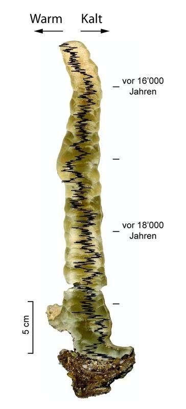 Geochemische Analysen entlang eines Stalagmiten
