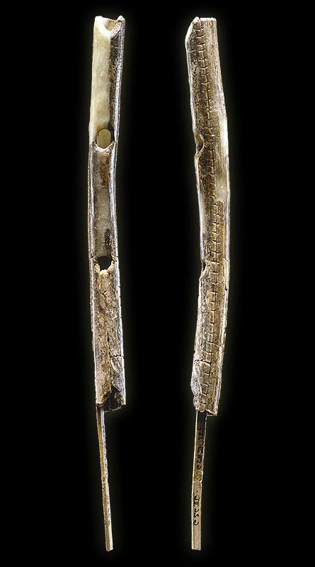 Flöte aus der Altsteinzeit