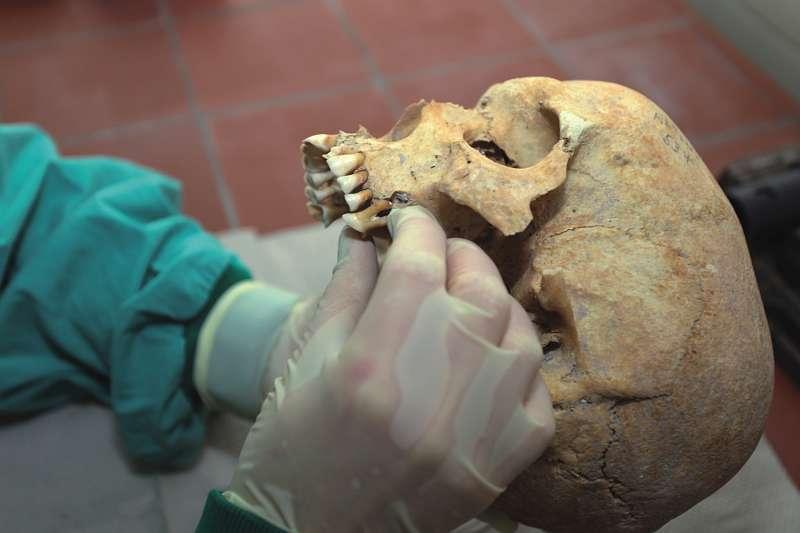 """Das länderübergreifende Forschungsprojekt """"Bones4Culture"""" geht der deutsch-dänischen Ahnengeschichte nach"""