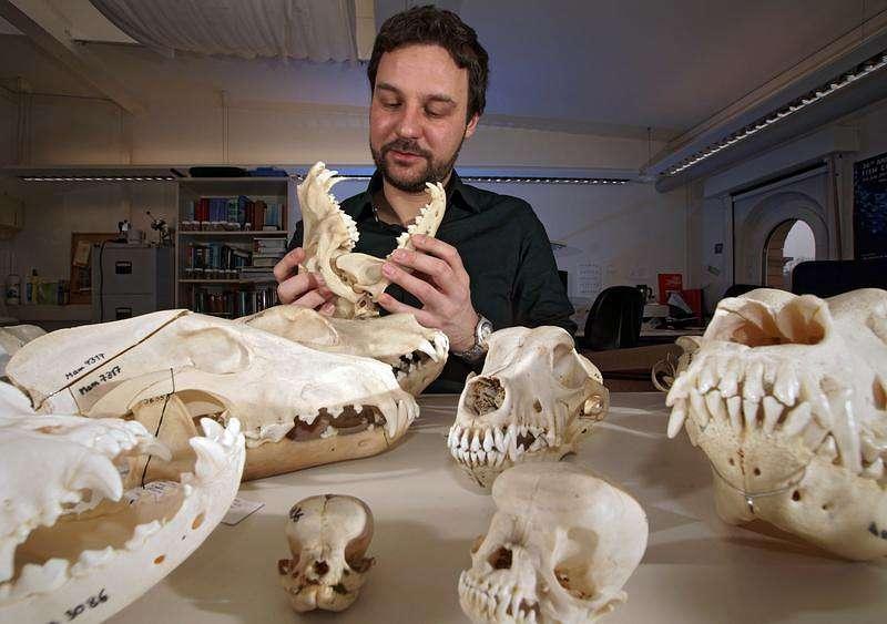 Evolutionsbiologe Dr. Kornelius Kupczik