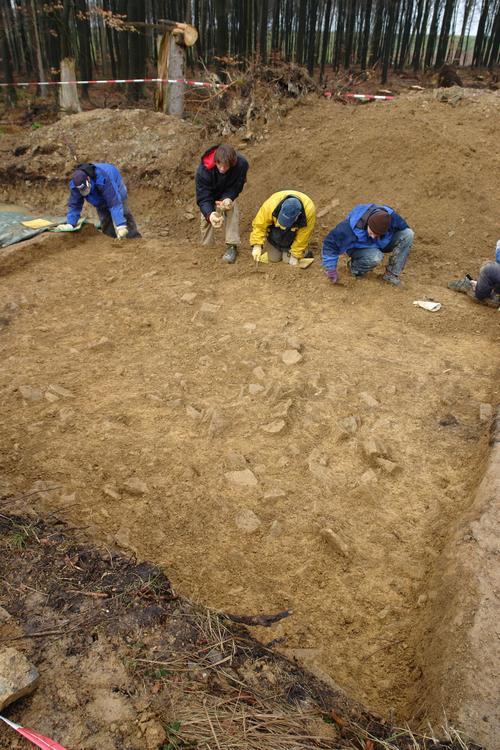 Die LWL-Archäologen ebnen mit Kelle und Kratzer die Fläche unter dem Wall des Römerlagers Kneblinghausen
