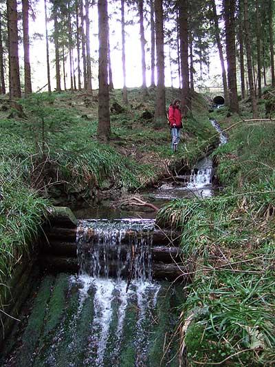 Der Nabentaler Graben bringt die Wasser des Bruchberges, des zweithöchsten Berges Niedersachsens, über den Dammgraben mit dem Sperber Damm auf die Clausthaler Hochfläche. (© Peter Welke)
