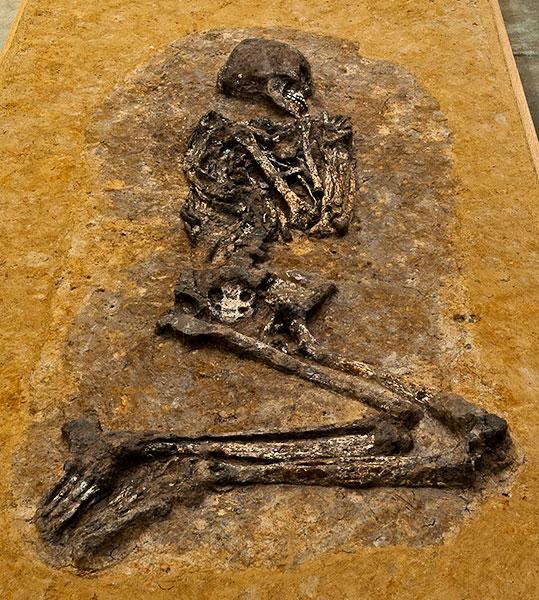 7.100 Jahre altes Skelett einer jungen Frau