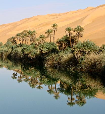 Wasser in der Sahara