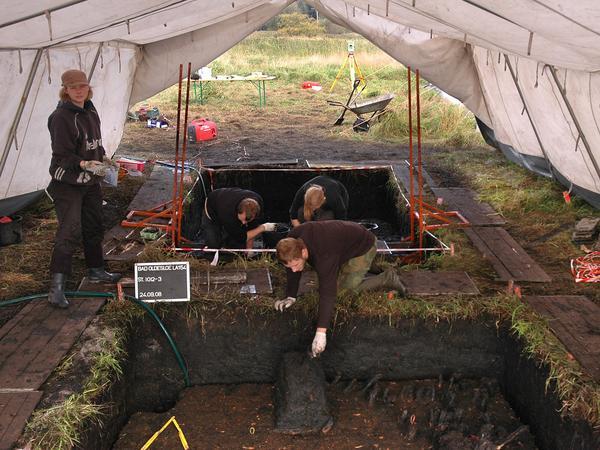 Steinzeit Bonn neues aus der steinzeit nachricht archäologie