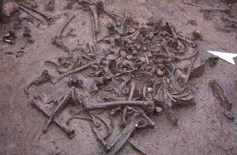 Die Skelettfundschicht im Tollensetal