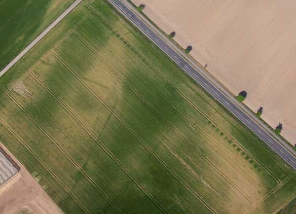 Entdeckt aus der Luft. Deutlich sind die kreisförmigen Bewuchsanomalien der ehemaligen römischen Wasserleitung nach Xanten parallel zur heutigen Strasse zu sehen.
