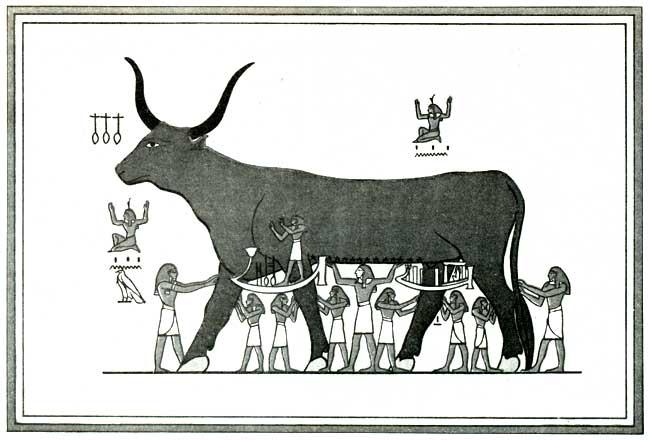 Die Himmelsgöttin Nut in Kuhgestalt, Illustration zum Buch von der Himmelskuh (aus: Budge 1904)