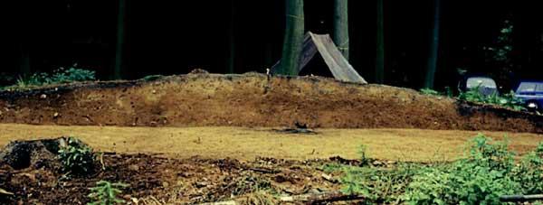 Scheiterhaufengräber sind gekennzeichnet durch die Überhügelung des Scheiterhaufens nach dem Abbrennen. 1972 wurde in Ankum-Tütingen, Landkreis Osnabrück, eine solche Bestattung freigelegt. Unter der Hügelaufschüttung lag auf einer Fläche von 2 x 2,5 m eine dicke Holzschicht (roter Pfeil), in der noch Balkenreste vorhanden waren. (Foto: Niedersächsisches Landesamt für Denkmalpflege - Archäologisches Archiv)