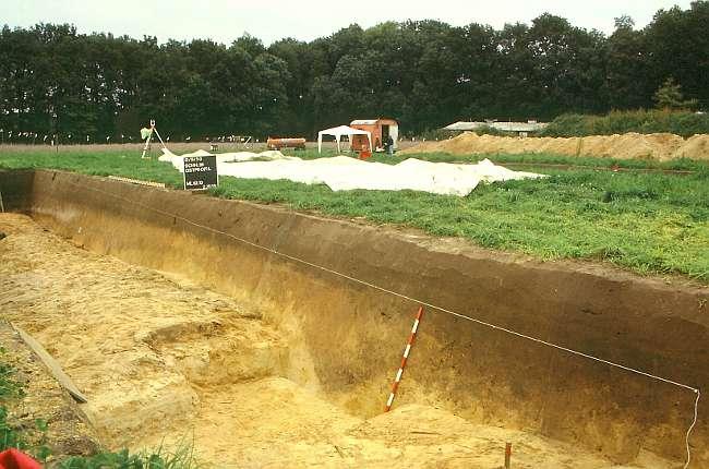 Die Wallanlage während der Ausgrabung; im Profil sind links vom Maßstab der Drainagegraben und nördlich anschließend die verstürzte Rasensodenmauer zu erkennen. (© Varusschlacht im Osnabrücker Land GmbH – Museum und Park Kalkriese: Grabungsteam)
