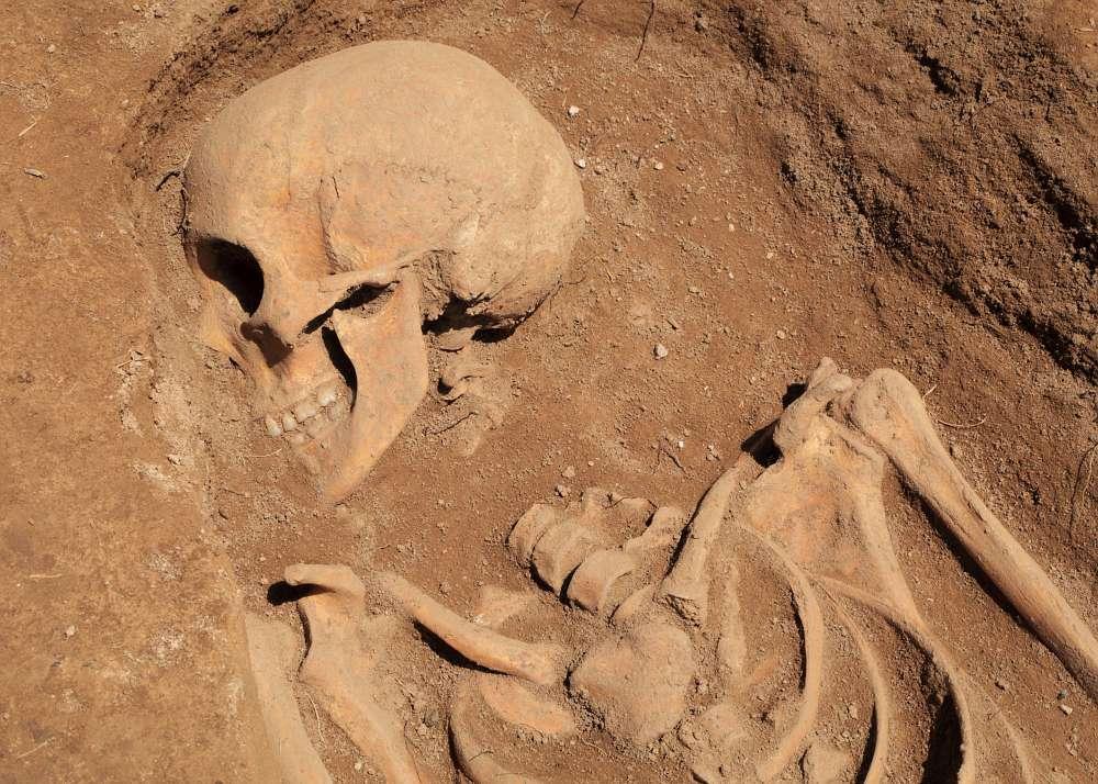 Menschliche Überreste von der Grabung in Toshbuloq, Usbekistan